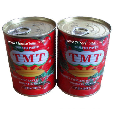 Dosen Tomatenpaste (TMTbrand Größe 400g Produktlinie)