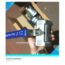 Válvula de bola de acero inoxidable 2PC con rosca de palanca de mano (BSPT)
