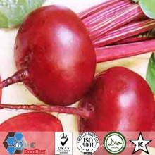 Natürliches dehydriertes getrocknetes rotes Rübenpulver
