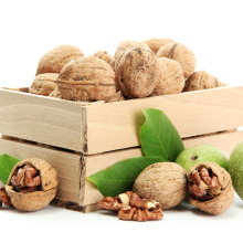 Chinese Juglans regia Extract Walnuts for wholesale