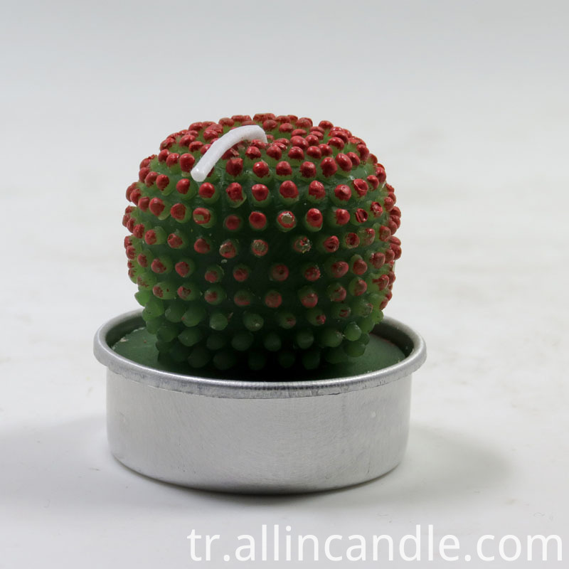 Cactus Candles 45