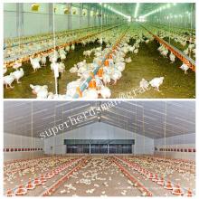 Equipo de alojamiento de aves de corral para pollo de engorde