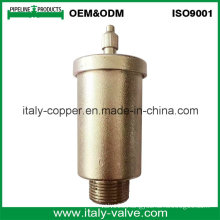 ODM New Type Brass Forged Air Vent Valve (IC-3042)