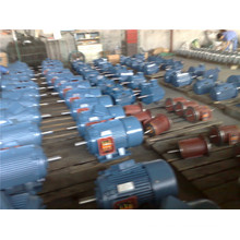 3 Phase Motor Y-2160m-4 Export to UAE