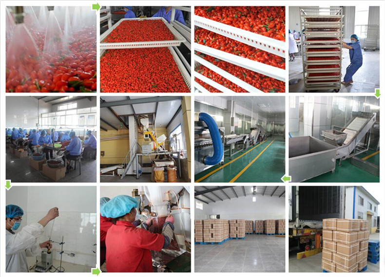 goji production
