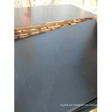 Madera de álamo frente a la madera contrachapada marrón / negro
