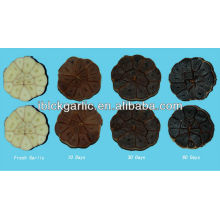 2016 new royal black garlic 4 pcs/box
