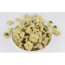 Chrysanthèmes naturels de haute qualité