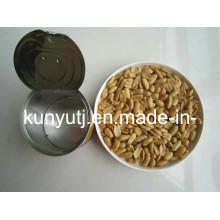 Amendoim torrado e salgado com alta qualidade