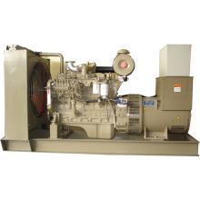 Cummins Diesel Generator Set (Perkins Option)