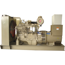Cummins Diesel Generator Set (Perkins option)