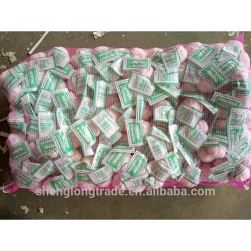 Tamanho branco normal do alho fresco chinês 5.0cm 3P no saco da malha 10kg