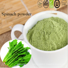 Manufacturer Supply Best Price Natural Spinach Powder