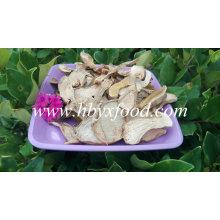 2015 Bueno Secado Boletus Edulis Price, Porcini Mushrooms for Sale