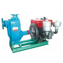 Kleinen Einzylinder-selbstansaugende Dieselmotor Wasserpumpe