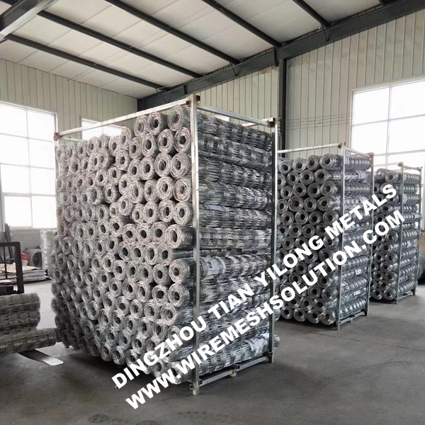 Galvanized Iron Cattle Fence for Road