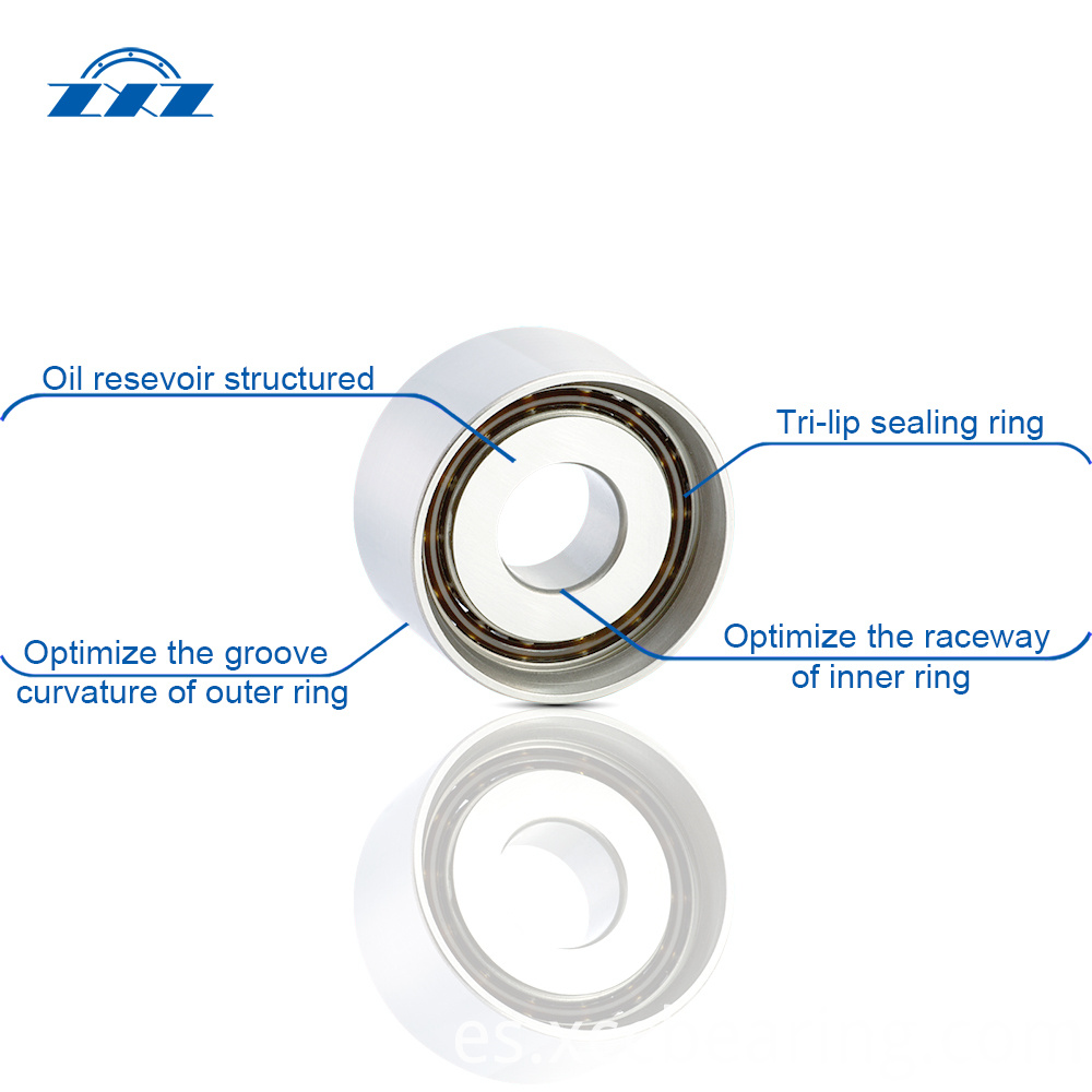 Tensioner bearings structure