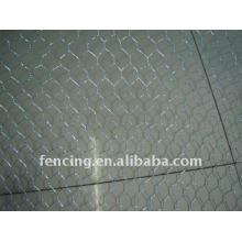 Boa Qualidade de Rede de Arame Hexagonal (fábrica)