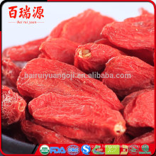 What is goji fruit goji berry natue what are goji berries used for