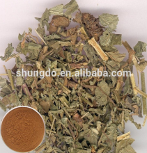 Natural Agrimory Extract/Hairyvein Agrimonia Herb Extract