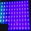 Heiße neue LED Interaktive Etage