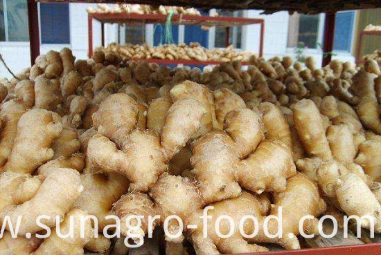 High Quality Dried Ginger