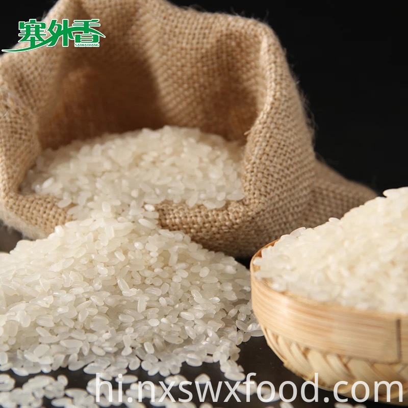 Rice with High Protein Content