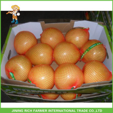 New Arrival Top Quality Fresh Pomelo For Export