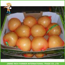 Pomelo fresco da qualidade superior da chegada nova para a exportação