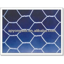 Treillis en fer hexagonale galvanisé