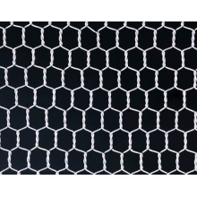 Galvanized Hexagonal Wire Mesh/Chicken Wire Mesh