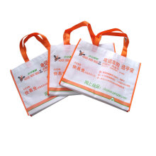 Nonwoven Bag for Promotion Tote