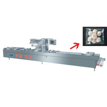 Snack Vacuum Packaging Machine With Man-computer Interface