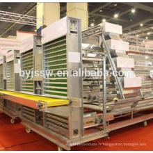 Fournisseurs de Machines de structures pour l'élevage de volailles en Thaïlande