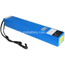 Batterie LiFePO4 48V prismatique cell winston