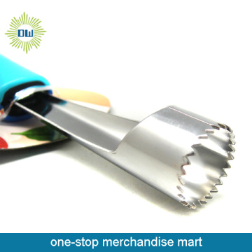 Stainless Steel Vegetable and Fruit Peeler