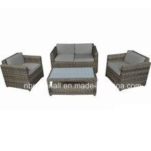 Mobília ao ar livre do sofá do Rattan (GN-9023S)