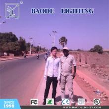 Christmas Single Arm Solar LED Street Light (BDTYN09)