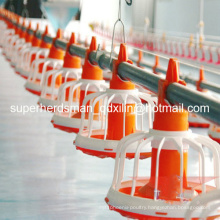 Hot Sale Poultry Farm Equipment for Broiler Chicken Farm