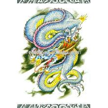 Dragão chinês tatuagem desenho livro