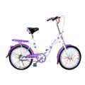 Várias bicicletas da cidade da bicicleta da senhora da cor