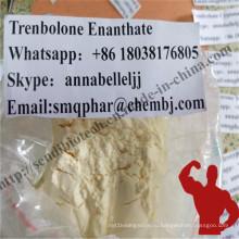 Желтый Tren стероидный порошок Trenbolone Enanthate Parabolan Tren E CAS 472-61-546