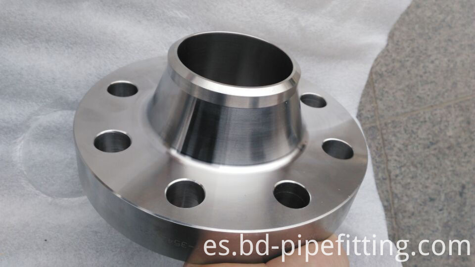 SS STEEL Flanges