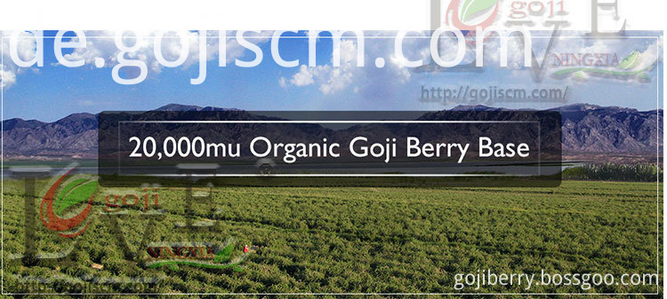 2017 Evengranular Dried Goji Berry base
