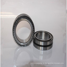 Rodamiento de rodillos cilíndricos de doble fila de doble sello SL04 5052PP