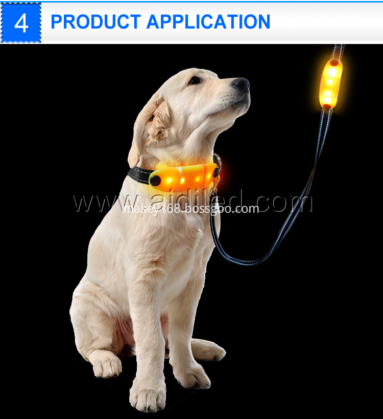 Nylon Led Dog Leash
