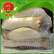 Chinese Gold Supplier of Fresh Pleurotus