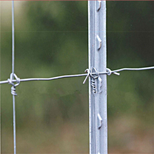 Factory wholesale cheap fence studded T post