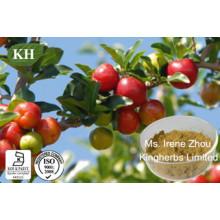 Vitamine C 17%, 25% Extrait de cerise Acerola
