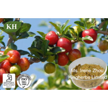 Vitamin C 17%, 25% Acerola Cherry Extract